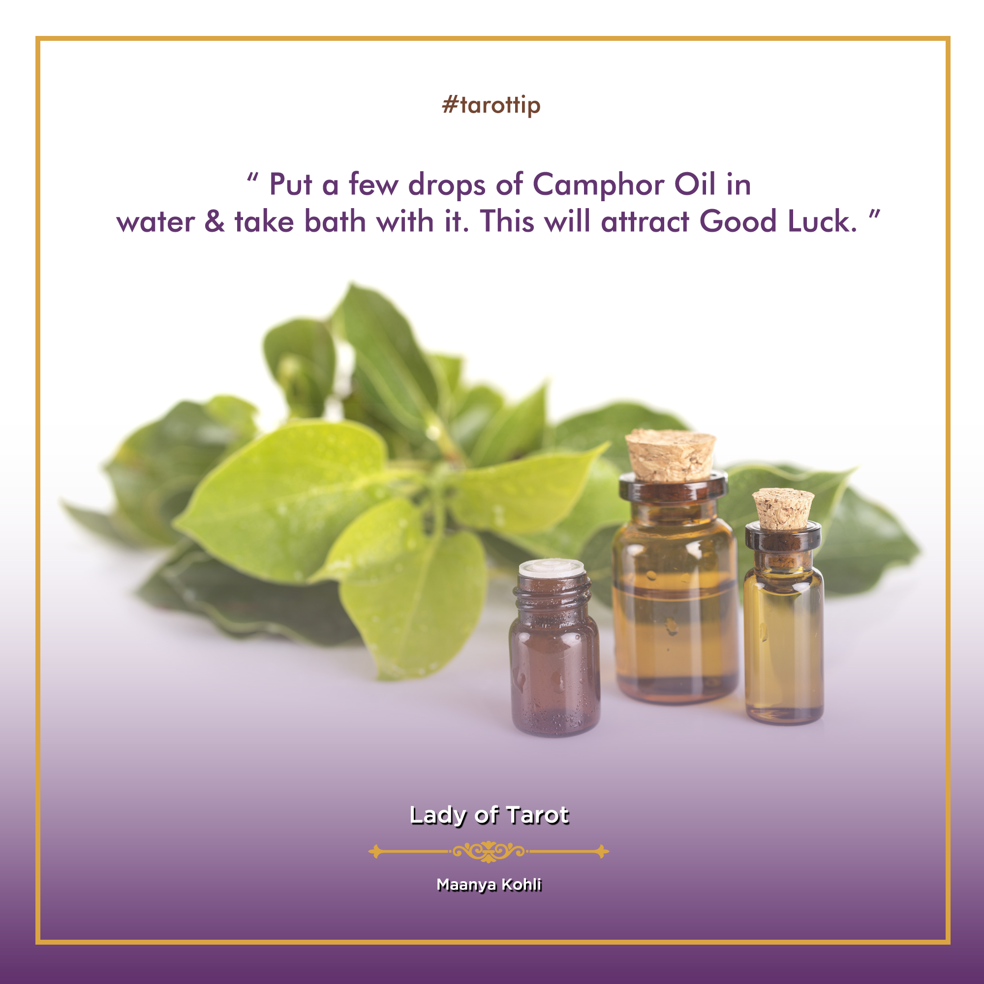 Tarot Tip: Put a few drops of camphor oil in water and take a bath with it. This will attract good luck.